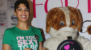 Video - Check Out Jacqueline Fernandez's Love for Animals